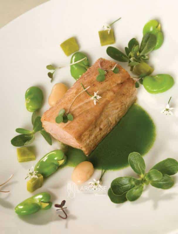 filete-de-cerdo-en-mole-verde-de-oaxaca-001-larousse-cocina