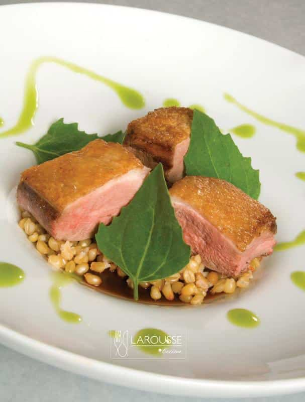 pechuga-de-pato-con-gelee-de-chile-mulatoy-aceite-de-chile-chilhuacle-001-larousse-cocina