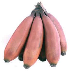 Fruto: plátano morado