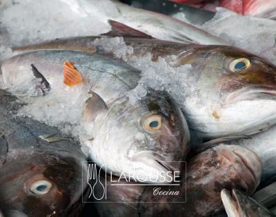 Foto: Pescado, esmedregales. © Ediciones Larousse / Francisco Palma.