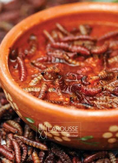 Foto: Salsa de gusanos rojos de maguey. (Bertha Herrera).