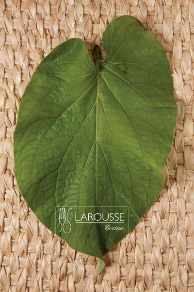 Foto: Hoja de hierba santa en petate. © Ediciones Larousse / Francisco Palma.