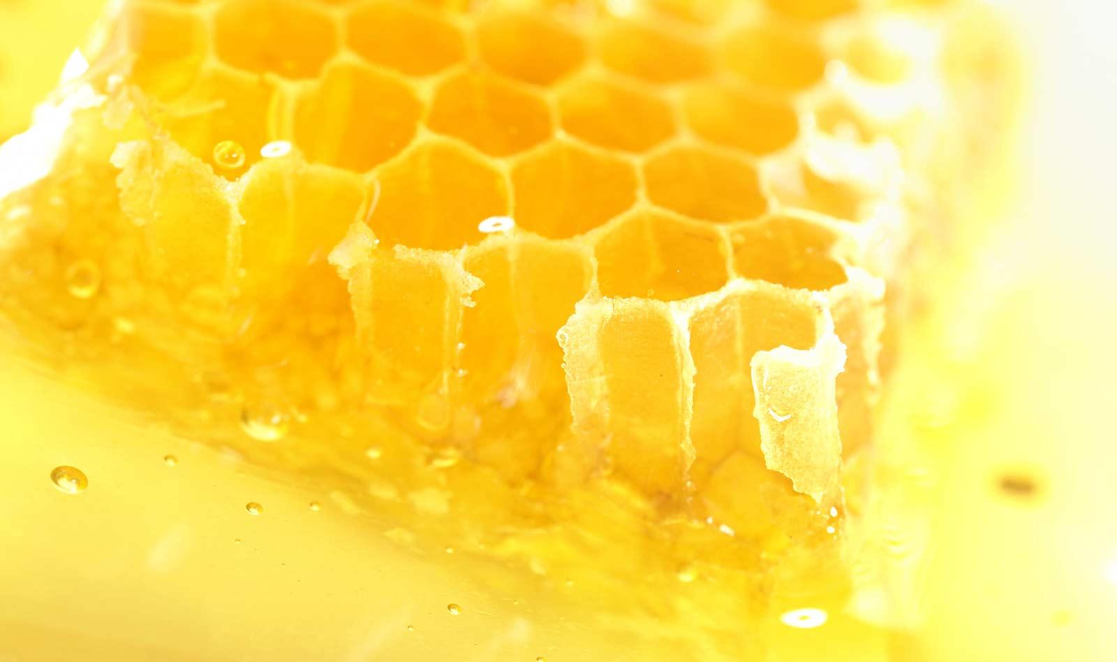 ¿Cómo sustituir el azúcar por miel?